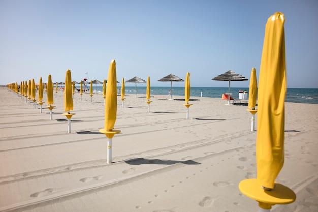 Tiro longo, de, praia recurso, com, guarda-chuvas