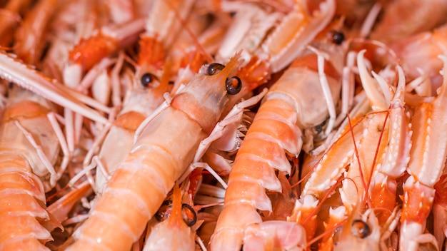 Tiro macro de camarão fresco na loja
