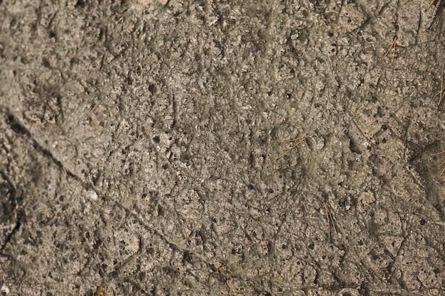 Tiro macro de fundo de pedra