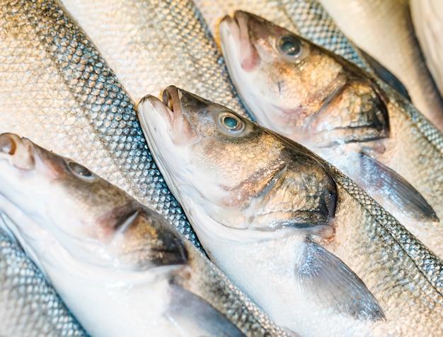 Tiro macro de peixe fresco na loja