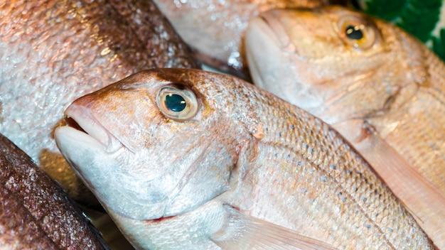 Tiro macro de pilha de peixe fresco