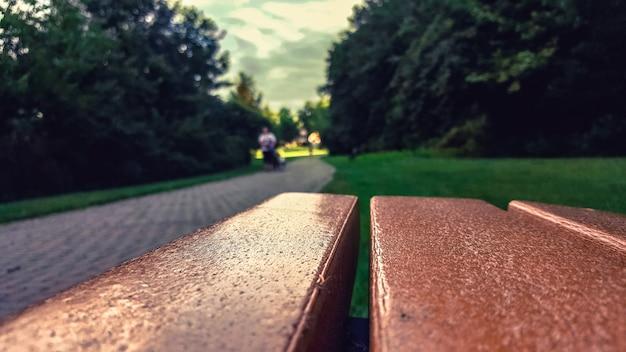 Tiro seletivo do close up de um banco marrom perto de um campo de grama e de árvores em um parque