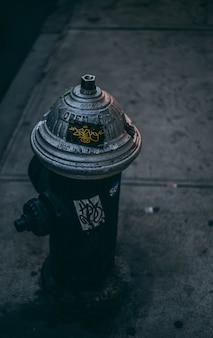 Tiro vertical da bomba de água de rua cinza em uma estrada