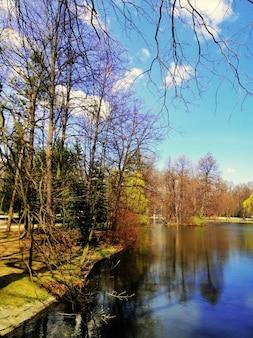 Tiro vertical de árvores ao lado de um lago em jelenia góra, polônia.