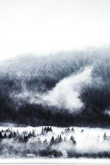 Tiro vertical de árvores perto de uma montanha arborizada em um nevoeiro