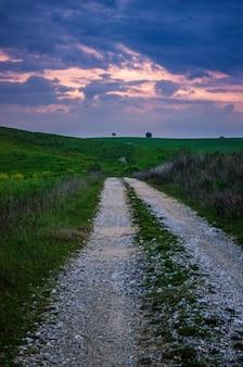 Tiro vertical de baixo ângulo de um pôr do sol de tirar o fôlego ao longo de uma estrada no meio de um cenário verde