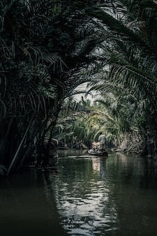 Tiro vertical de pessoas em um barco no meio do lago com o reflexo das palmeiras
