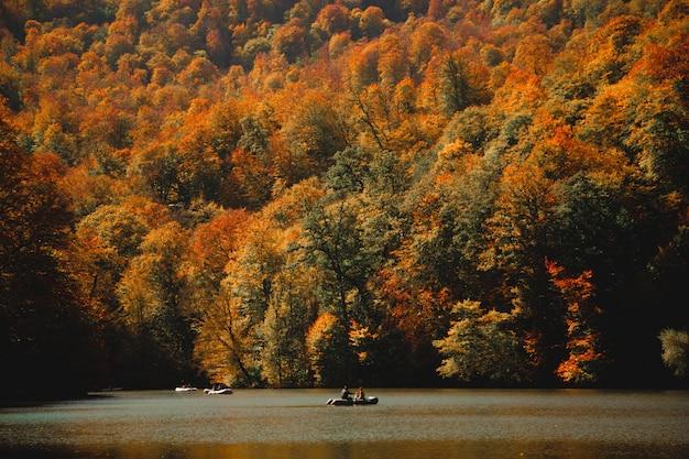 Tiro vertical de pessoas navegando em um ake verde completamente cercado por uma floresta colorida de outono