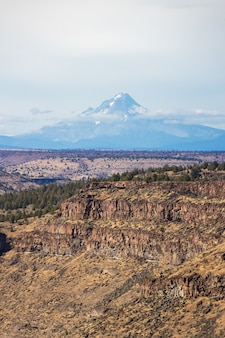 Tiro vertical de um belo desfiladeiro com falésias rochosas e uma alta montanha de neve