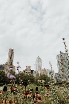 Tiro vertical de um campo gramado cheio de flores em chicago com arranha-céus visíveis à distância