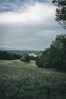 Tiro vertical de um campo verde durante a noite, sob o céu nublado