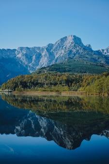 Tiro vertical de um mar claro nas montanhas com uma floresta verde