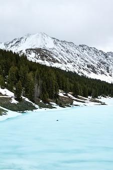 Tiro vertical de um mar congelado perto de árvores e uma montanha de neve ao longe sob um céu nublado