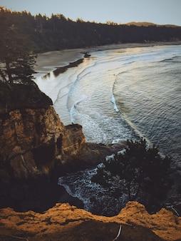 Tiro vertical de um penhasco perto de um mar com a floresta ao seu redor
