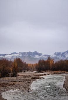 Tiro vertical de um rio no meio de um campo com árvores e montanhas a distância