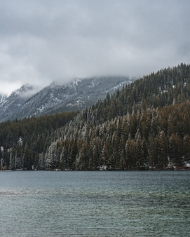 Tiro vertical de um rio no meio de um cenário montanhoso coberto de nevoeiro