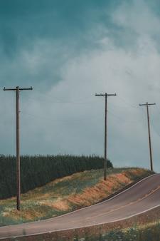 Tiro vertical de uma estrada rural estreita com postes de eletricidade e uma floresta