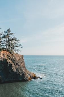Tiro vertical do belo mar com falésias rochosas e árvores ao lado