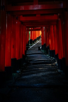 Tiro vertical do caminho com portões tori vermelhos