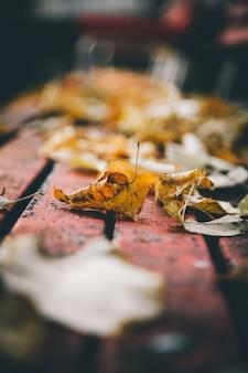 Tiro vertical do close up de uma folha amarela no banco com um fundo desfocado