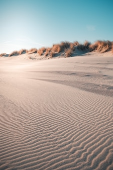 Tiro vertical do deserto sob o céu azul claro capturado em oostkapelle, holanda