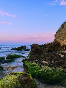 Tiro vertical do lado bonito do mar, com falésias e vegetação e lindo céu