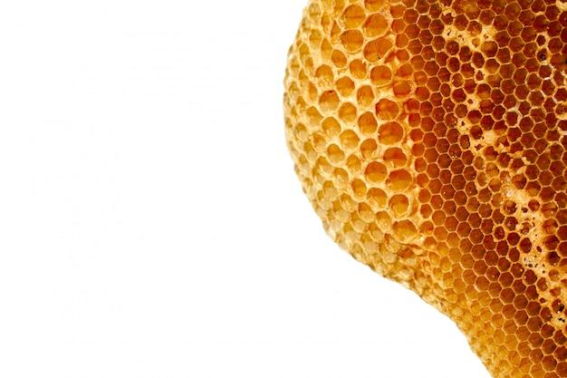 Tiros de close-up isolado de abelhas trabalhando em células de mel