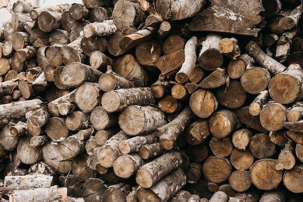 Tocos de madeira para arranjos de inverno