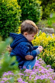 Todler pequeno que joga com flores no jardim