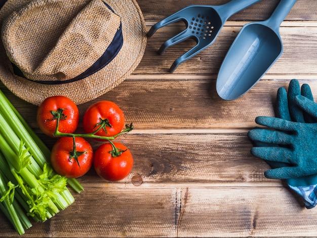 Tomate e aipo na mesa de madeira com equipamentos de jardinagem