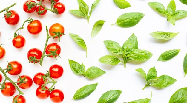 Tomates de cereja frescos com as folhas da manjericão no branco.