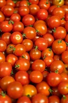 Tomates de cereja maduros vermelhos brilhantes