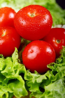 Tomates frescos e molhados