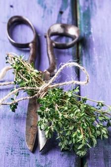 Tomilho e tesoura na mesa de madeira violeta