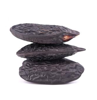 Tonka feijão isolado. feijão de dipteryx odorata, cumaru ou kumaru. tonka de aroma fresco.