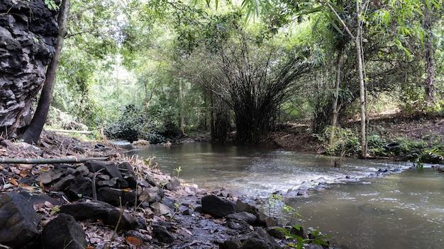 Toob hom doi no rio lampang na tailândia