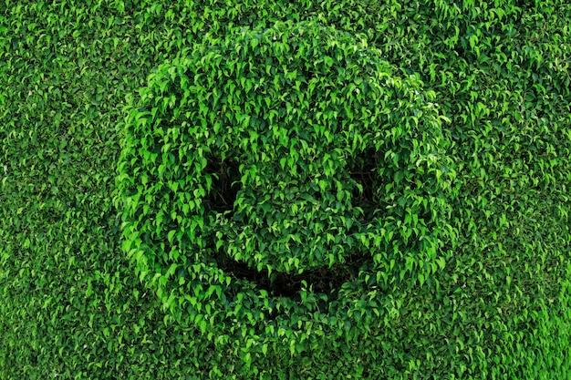 Topiaria em forma de rosto sorridente fundo verde verão