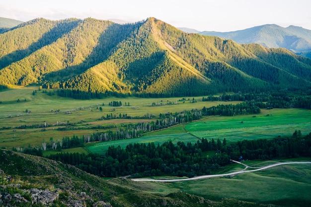 Topo da montanha vívida maravilhosa com floresta na luz da noite.
