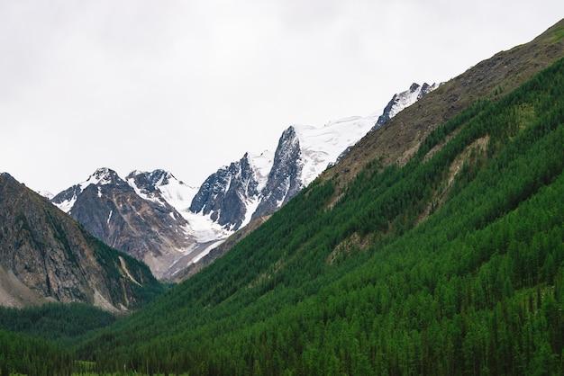 Topo de montanha com neve atrás de colina com floresta sob céu nublado