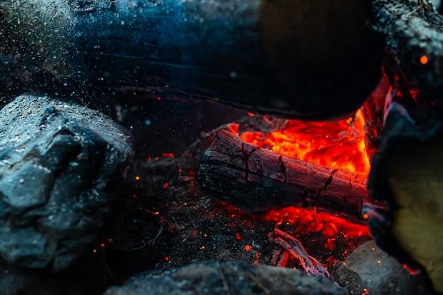 Toras ardentes queimavam em fogo vívido.