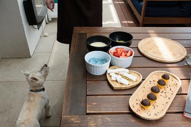 Torrão, brigadeiros e ingredientes para bolo na mesa (mogangos, pistache, chocolate branco granulado e creme de manteiga azul). ao lado de um cachorro.