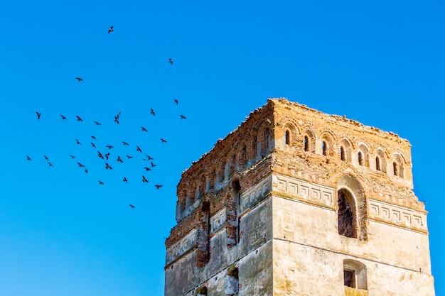 Torre do antigo castelo contra o céu azul com pássaros