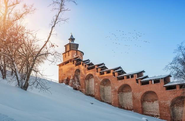 Torre do relógio do kremlin de nizhny novgorod e pássaros