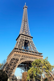 Torre eiffel famosa e árvores em paris