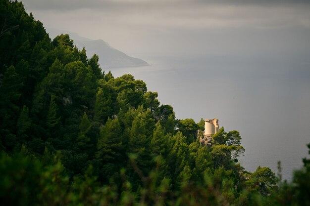 Torre em penhasco em litoral arborizado