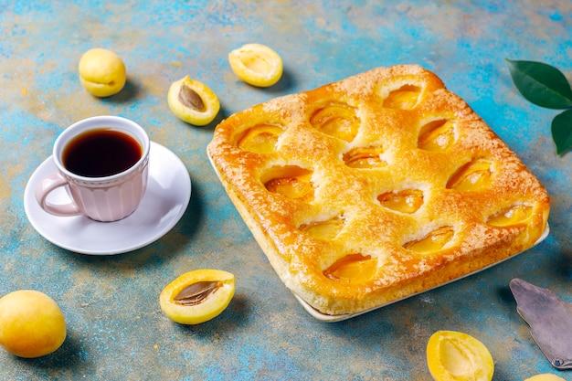 Torta de damasco de verão caseiro deliciosa sobremesa de frutas. torta de damasco. torta de frutas.