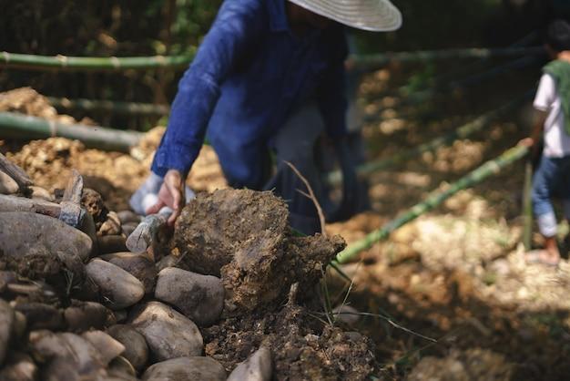 Trabalhador asiático, construindo barragem de seleção natural