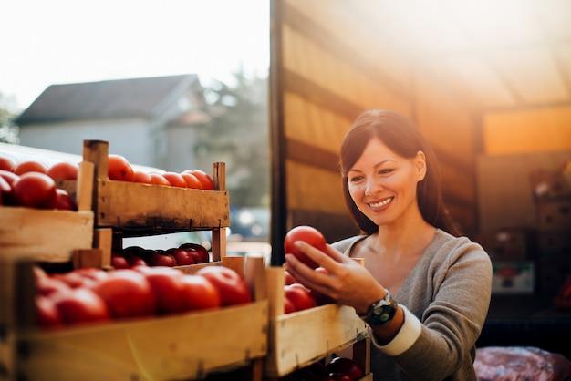 Trabalhador de controle de qualidade de sorriso do retrato que verifica tomates. controle de qualidade.