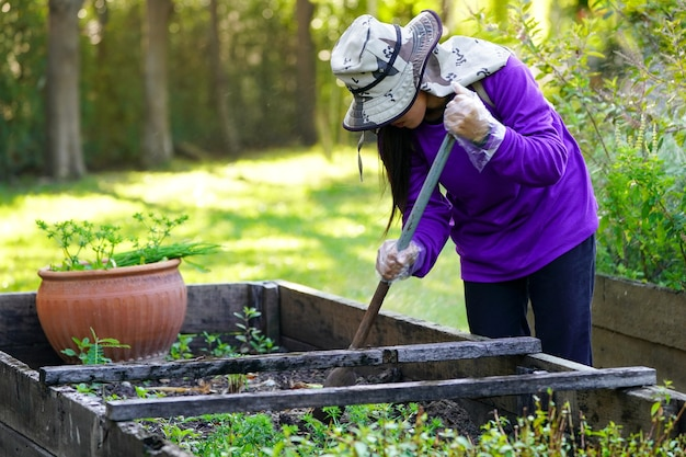 Trabalhador de graden cuidando da planta no jardim.