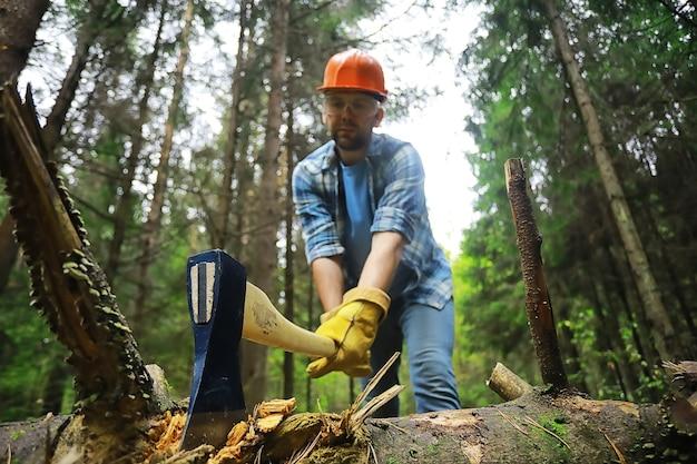 Trabalhador do sexo masculino com um machado cortando uma árvore na floresta.